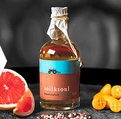 Gin - Best of Botanicals