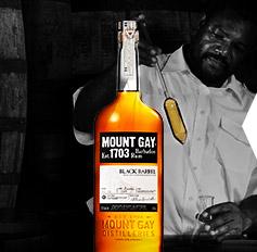 Rum - Purer Karibik Genuss