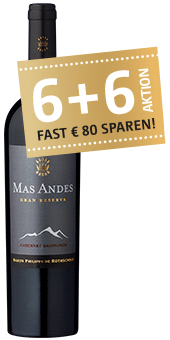 Mas Andes Gran Reserva Valle Central 2017