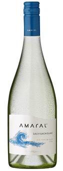 Köstlichalkoholisches - 2019 Amaral Sauvignon Blanc Leyda Valley - Onlineshop Ludwig von Kapff