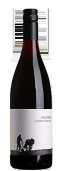 Köstlichalkoholisches - 2017 Pflüger Cuvée Rot BIO Biowein trocken, Pfalz - Onlineshop Ludwig von Kapff