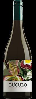 Köstlichalkoholisches - 2019 La Casa de Lúculo Blanca Navarra DO - Onlineshop Ludwig von Kapff