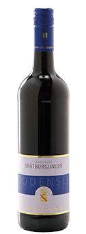 Köstlichalkoholisches - 2015 Markgraf von Baden Bodensee Spätburgunder halbtrocken VDP.Gutswein halbtrocken, Baden - Onlineshop Ludwig von Kapff