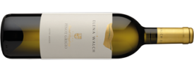 2016 Elena Walch Pinot Grigio Vigna Castel Ringberg