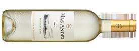 2016 Mas Andes Sauvignon Blanc