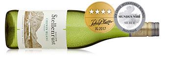 Weinflasche mit südafrikanischem Weißwein Chenin Blanc