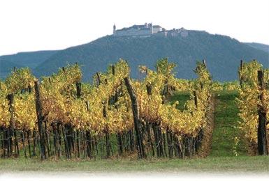 Stift Göttweig - Wein-Geschichte seit 1083