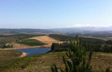 Start > Erzeuger > PAUL CLUVER - Weine vom Weingut Paul Cluver   Paul Cluver in seinem Weinkeller   Elgin Valley, Südafrika - Die Wiege der Weine von Paul Cluver