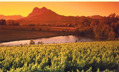 Seinen Namen hat das Weingut vom höchsten Berg der sie umgebenden Stellenbosch Mountains